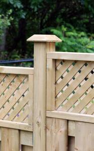 charlotte-fence